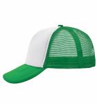 Белый/Зеленый папоротник