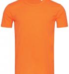 Оранжевая тыква